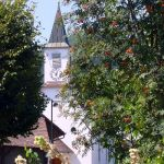 23_Kapelle_im_Sommerflor