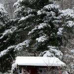33_Winteridylle_Zielacker